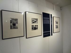 Vita und Bilder von Jürgen Graetz